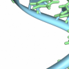 RNA生物学为细胞识别和健康提供了关键