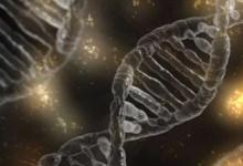 细菌毒素引起的癌症突变可预防