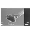 重新设计锂离子电池负极以获得更好的性能