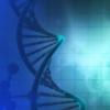 孤独的基因突变会导致改变生命的疾病 从而影响多个身体系统