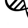 ENCODE 3项目详细介绍了人类和小鼠基因组的内部运作
