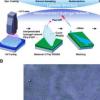 3D非接触式交互式显示器可检测手指湿度以改变颜色