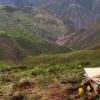 古代山地形成和季风帮助建立了现代生物多样性热点