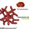 纳米反应器策略可产生优异的负载型双金属催化剂