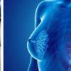 研究性疫苗和免疫疗法可以很好地对抗乳腺癌