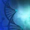 研究人员确定了遗传性神经病一种新的遗传原因
