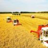 确定通过可持续农业发展改善生计的新战略