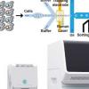 科学家推出拉曼活化细胞分选仪 以高通量发现酶