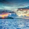 科学家揭示了沿海海洋频繁绿潮的长期累积影响
