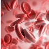 研究人员发现导致白血病的新机制
