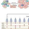 鉴定出568种可能引发癌症的基因