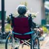 模仿其症状的阿尔茨海默氏病和普通脑疾病的潜在联系