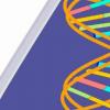 小型工程化治疗传递系统可安全解决小鼠的遗传问题