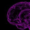挖掘大脑中不断呈现的大量无意识信息