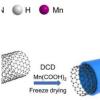 锰单原子催化剂提高电化学二氧化碳还原性能