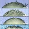 石墨烯添加剂显示出控制有机晶体结构的新方法