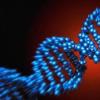 研究人员确定了癌症染色体混乱中的一种模式