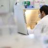 发现挑战基因疗法的基础
