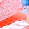 AMSBIO为细胞治疗产品的临床应用提供新的冷冻解决方案