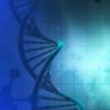 研究人员创造了控制产甲烷菌基因的新工具