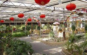 甘肃张掖市民乐县的海升现代智能温室工业化栽培生态示范项目跃入眼帘