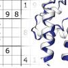 数独求解算法为蛋白质医学带来了希望