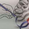 正确折叠极长的染色体DNA分子对于细胞的正确功能至关重要