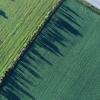 获得专利的分子加热器可提高农作物产量