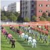 江西省第六届全民健身运动会组委会推出了全民健身大讲堂栏目
