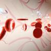 人心脏的细胞和分子图可以指导个性化医学