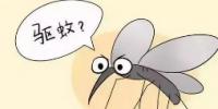科学家开发出新的工具来研究蚊子的叮咬行为