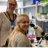 基于果蝇的新型疾病模型用于研究人类智力残疾综合症