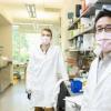 可编程药物是新生物电路研究的目标