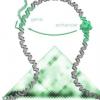 DNA片段的重复和倒置导致女性痣的男性化