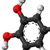 科学家报告多巴胺和5-羟色胺在人类感知和决策中的作用