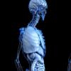 即使是轻度脂肪肝疾病也与死亡率增加有关