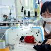 广州派运服饰有限公司前身为派运制衣 诞生于上世纪90年代初
