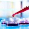 雌性蚊子可以检测血液中四种不同物质的组合