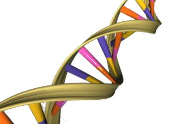 基因组考古学家发现了激活针对癌症的免疫反应的途径
