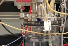 微生物重排技术有望推动生物制造的蓬勃发展