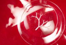 科学家将细菌用作微型3-D打印机