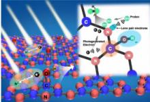质子活化氯通道的结构和pH敏感机制