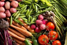 饮食质量对糖尿病人群血管结构和功能的影响