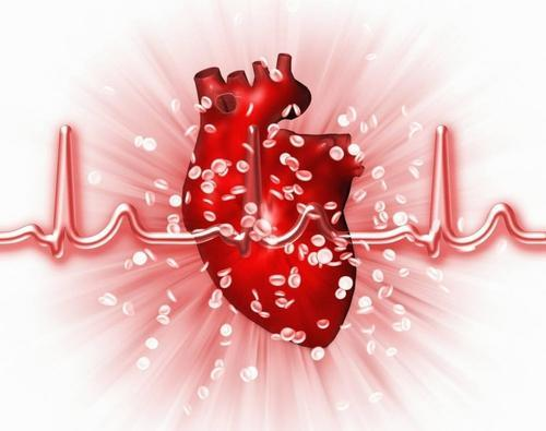研究人员正在模仿恶性心脏肿瘤的纵隔结核
