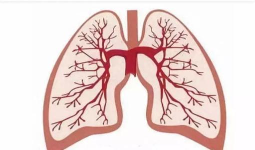 了解囊性纤维化患者的肺部感染