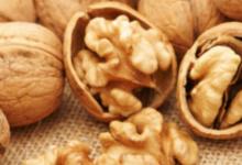 核桃如何影响体重饱腹感与血压和胆固醇