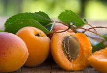 冷藏是如何影响桃果实的品质和抗氧化活性