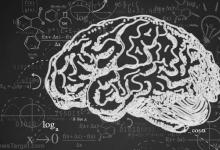 科学家发现大脑如何控制衰老