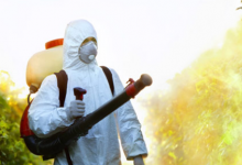 新科学发现农药残留损害了我们食品和营养供应的安全性