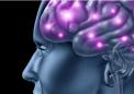 维生素B3可通过预防神经系统损害来改善认知和身体功能